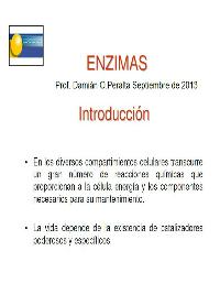 tapa enzimas